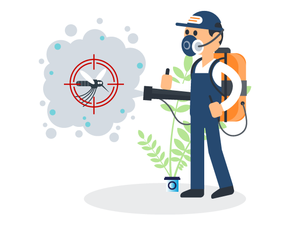 Professional Pest Control Bongaree